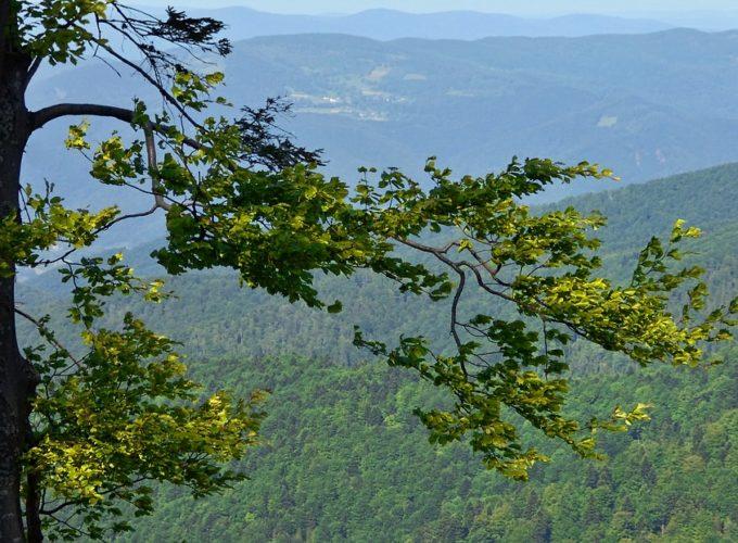 Pohoří v Karpatech jménem Beskydy. Proč je tak oblíbené a navštěvované?